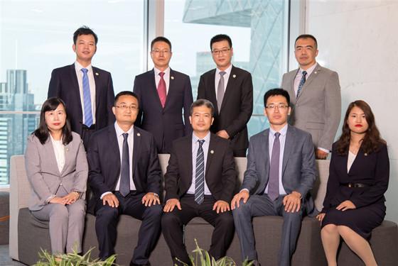 北京资深刑事律师团队
